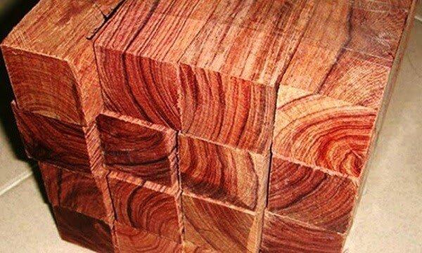 Hình ảnh gỗ Hương vân Nam Phi
